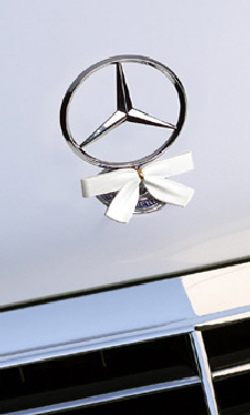 Holiday White SratWreath bow on Mercedes hood