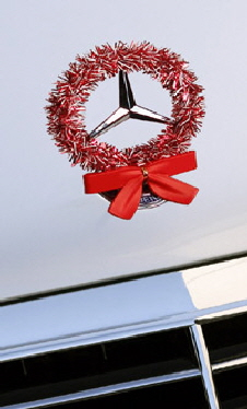 Peppermint StarWreath kit on Mercedes hood